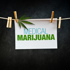 Not all medical marijuana programs are created equal